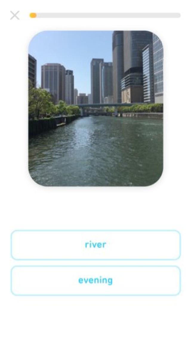 画像: Duolingoから、自分でもカードを作れるフラッシュカードアプリ「Tinycards」が登場!