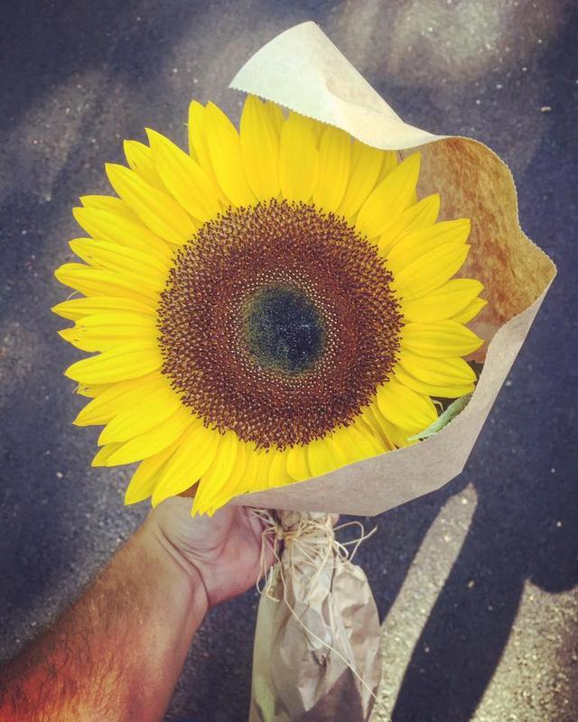 画像1: 愛慕、崇拝といった花言葉のある夏の花、ひまわりの逸話が話題になっています。 5ドルで買ったひまわり Danny Wakefieldさんはある日5ドルでひまわりを買いました。 本当は、好きな人に贈ろうと思って買ったのですが「1度しかデートしていない仲で、いきなりこのプレゼントは重いかなと思って」贈るのはやめたそう。 しかしそのまま枯らしてしまうのもかわいそう。 そこで次の朝、仕事に行く途中に誰かにあげようと思い立ったといいます。 涙を浮かべている女性にプレゼント いつものカフェでコーヒーを飲んでいると、静かに涙を浮かべて何かを読んでいる女性が目に入り「彼女がぴったりだ」と思ったのだそうです。 彼女のテーブルに近付き「すみません...」と説 [...] irorio.jp