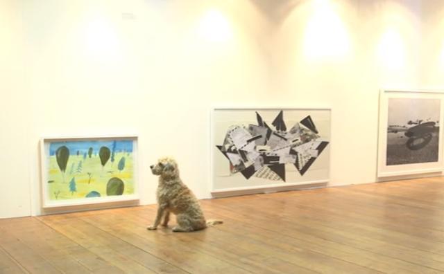 画像: アートは人間だけのものじゃない!?世界初、犬用の美術展が開催され話題に