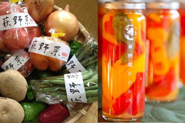 画像1: 季節を問わず、カレーやその他の料理の付け合せにピッタリの食品といえば、ピクルス。 外国産のきゅうりのピクルスはスーパーで比較的手に入りやすいが、酢がきつく感じられるなどの点から、少なくとも日本の食卓には上がりにくい食品だ。 ところが、そのピクルスを山口県萩市で生産された野菜で作り「日本人好みの味」に仕上げた人がいる。 「萩野菜ピクルス」の店長、椋木章雄さんは山口県萩市の出身。 高校卒業後いったん上京し、2010年に帰郷した。この時から萩野菜ピクルスの誕生物語は始まる。 「萩を再生させたい」思いを抱く 高校生の時に、生まれ育った萩市が人口減少により、空き家が増え、街が廃れていく様子を見ていた椋木さんは「萩の街に人口を増やしたい」という [...] irorio.jp