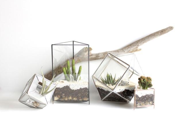 """画像1: 化石や植物、鉱物などの自然物を繊細で幾何学的なガラスケースに収めた""""テラリウム""""の美しさに癒されると話題を呼んでいる。 自然の造形美をオブジェのように この作品を制作しているのは""""ROUSSEAU(ルソー)""""の中山 茜さん(@LaPliocene)。 ROUSSEAU/ルソーさん(@rousseau.akane)が投稿した写真 – 2016 3月 13 5:36午前 PDT 自然の造形美をオブジェのように楽しめむため、繊細で幾何学的なガラスケースをデザインした中山さん。 そのガラスケースの中に収められた化石や植物、鉱物などが、まるでフランスの画家・アンリ・ルソーが描く""""幻想的な緑の世界""""を思わせるような空間を構築している [...] irorio.jp"""