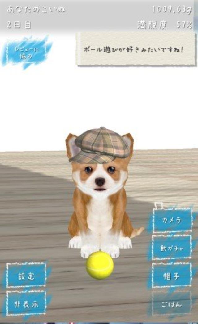 画像: 癒される...ひたすら子犬が可愛い放置系育成ゲーム『幸せの犬育成ゲーム3D』