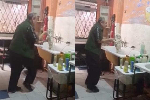 画像1: 大事なペットをあずけるペットサロン。できるだけ「いい」サロンにあずけたいものです。 そうした飼い主の思いを満たしてくれそうな愛情あふれるペットサロンが話題になっています。 ノリノリでシャンプー ブエノスアイレスでペットサロン「PetShop Perrito Feliz」を営むルイス・アントニオ・カバレロさんのこの姿。 妻のガブリリエラさんが撮影したというこの動画で、カバレロさんは音楽に合わせてノリノリでワンコを洗っています。 この動画は再生回数が431万回、「いいね!」「超いいね!」などが合わせて2万4,000の大人気となっています。 ホームレス犬の保護活動も カバレロさんはサロンの仕事の合間に、ホームレスの犬を保護して新しい飼い主 [...] irorio.jp
