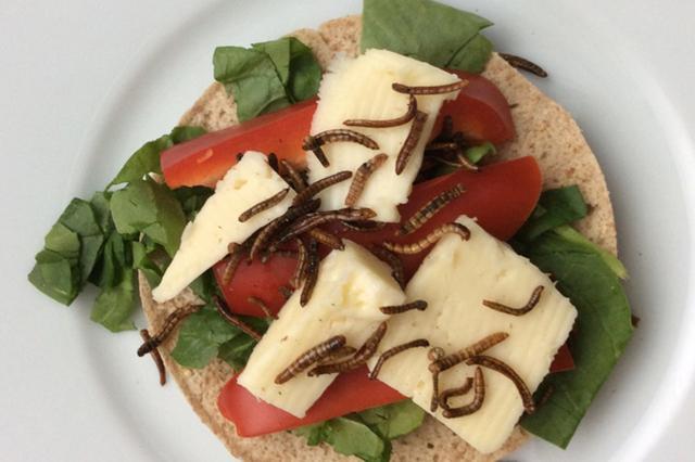 """画像1: こんなのテレビの罰ゲームでしょ、というレベルの衝撃企画が、イベント参加者を募集している。 「Scary Delicious: Wine + Bug Pairing(スケアリー・デリシャス:ワインと虫のペアリング)」は、昆虫や幼虫を使ったコース料理とワインのマリアージュを楽しむ一夜限りのディナー。 実は栄養豊富? 虫といえば日本ではイナゴの佃煮が有名だが、世界にはアリやカブトムシ、タガメなどを食べる習慣のある国もある。 本イベントを主催するBugibleによると、世界の80%の人たちは何かしらの""""虫""""を食べたことがあり、アメリカの食文化はそこから随分遅れているという。 タンパク質やミネラル、ビタミンを豊富に含む昆虫は、一種の完全食品と [...] irorio.jp"""