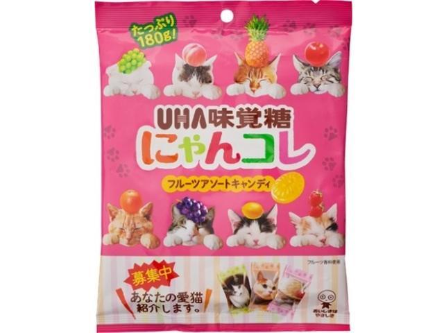 画像: あなたの愛猫がキャンディのパッケージに採用されるかも?UHA味覚糖「にゃんコレ」がうちねこ自慢の写真を大募集!