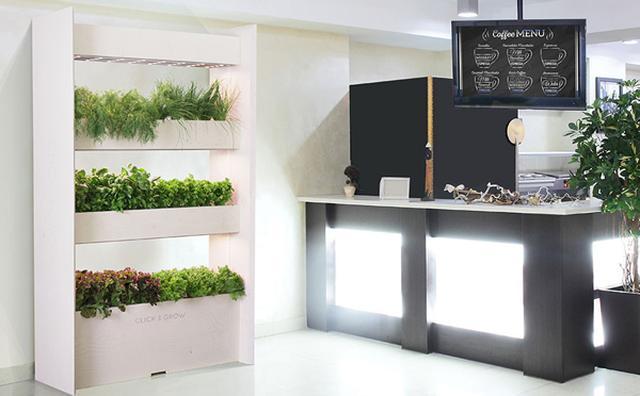 画像: 日当たりが悪くても大丈夫☆本格ガーデニングを実現する室内用花壇がスタイリッシュ