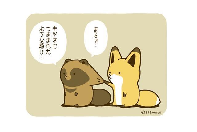 画像1: ちょっとぬけてるタヌキと、ちょっとイジワルなキツネの様子を描いたマンガやイラストに注目が集まっています。 Twitterで大人気! これは、イラストレーターで漫画家のアタモト(@atamotonu)さんの作品です。 アタモトさんは、タヌキとキツネの日常を描いたマンガやイラストをTwitterに公開しています。 オオカミに遭遇したタヌキ pic.twitter.com/UARGxVzRSW — アタモト (@atamotonu) 2016年10月3日 おっとりなタヌキが、キツネにイジられながらも、仲睦まじい様子に思わずほっこり。 コロンとしたフォルムの「タヌキとキツネ」のイラストが、とても可愛らしいです。 奏でられるタヌキ pic.t [...] irorio.jp