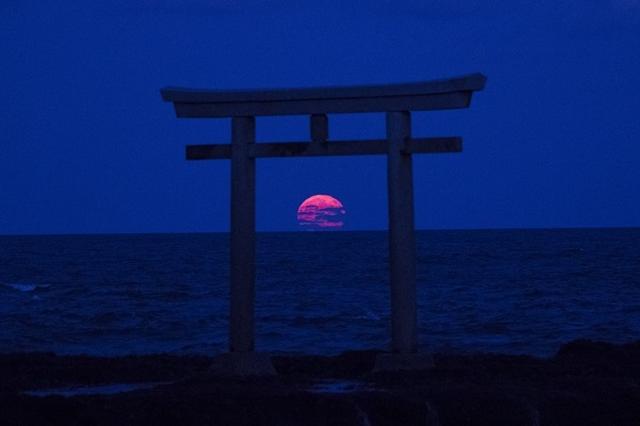 """画像1: 海から出てきた月が鳥居を通過していく「風景写真」に注目が集まっています。 神々しい「風景写真」 ぐるぐるうづまき(@guruguruuzumaki)さんは海から出てきた月が、鳥居を通過してく「風景写真」を撮影しTwitterに公開しました。 大洗、今日の月の出。 pic.twitter.com/uZy3DnNInx — ぐるぐるうづまき (@guruguruuzumaki) 2016年10月16日 撮影場所は、茨城県の東茨城郡にある大洗町だそうです。 大洗町には『大洗磯前神社』があり、海に立つ『神磯鳥居』は日本を代表する""""日の出""""の名所でもあるんだとか。 また、関東で唯一、海に立つ鳥居が見られる場所としても有名。 海から出てきた月が [...] irorio.jp"""