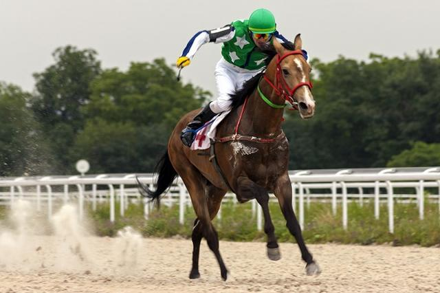 画像1: 競馬のルールが「馬の保護」を考慮したルールに代わる。 2017年1月からルールを変更へ 日本中央競馬会(JRA)は12日、2017年から競争ルールを変更すると発表した。 ルールの国際調和と騎手・馬の保護のために「落馬した場合の再騎乗を禁止」に。また、ルールの国際調和と動物愛護の観点から、騎手が使うムチを「パッド付き」に限定する。 衝撃を吸収して、馬の痛みを減少 「パッド付きムチ」とは、衝撃を吸収するパッドが付いて、叩いた際の痛みが抑えられるムチ。 アメリカでは2009年頃に東・西両海岸の競馬場の騎手たちが正式導入に先駆けて緩衝パッド入りのムチの使用を始めた。 競馬主要国のほとんどで義務化 パッド付きムチは日本を除く競馬主要国では既に [...] irorio.jp