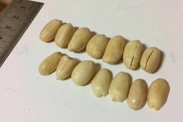 画像1: 「リアルすぎる」「思わず食べたくなる」と、人々をうならせる本物そっくりの彫刻作品。 そんな精巧な作品を次々と生み出す、川崎誠二さん(@sawsnht )をご紹介したい。彼の巧みな技はツイッターなどで度々話題となり、IRORIOでも何度か取り上げてきた。 本物そっくりのピーナッツ 最近新たに「本物そっくり」というより、「これは絶対本物だろう」と、目を見張るような作品が投稿され大きな反響を呼んでいる。 それがコチラ。 言わずもがな、ただピーナッツをきれいに並べただけではない。 ご本人のツイートをご覧いただこう。 2つぶほど木彫りのピーナッツなんですけども、自分で「これはわかんねーわww」ってなってる pic.twitter.com/6T [...] irorio.jp
