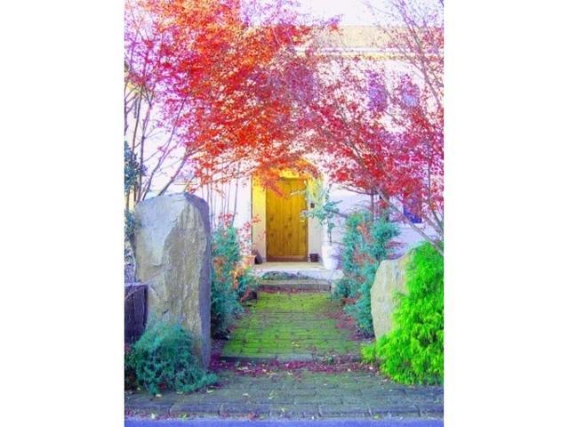 画像: 理想の庭づくりも、ふるさと納税でかなえる時代!?