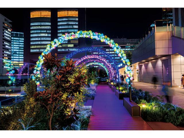 画像: 新宿で音楽イベント開催!音楽とイルミの饗宴を楽しもう