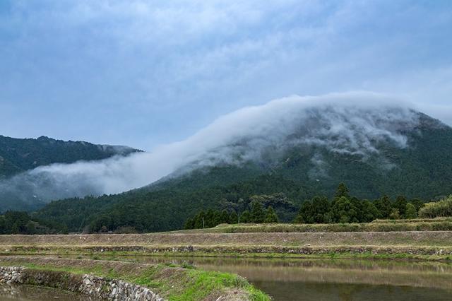 画像1: 熊野古道伊勢路にある「風伝峠」のふもとで21日、巨大な朝霧が滝のように流れこむ「風伝おろし」が見られた。 巨大な朝霧が流れ込む「風伝おろし」 三重県の南部、紀伊半島の南東部にある御浜町尾呂志では初秋から春にかけての早朝、熊野古道の峠からふもとに巨大な朝霧が山を包み込むように流れ込む「風伝おろし」という現象が発生する。 山の向こうにある紀和町の盆地に発生した霧が、御浜町との境にある熊野古道伊勢路の「風伝峠」を超えて、海側の温かい地区に流れ込んでくる現象だ。 盆地にたまった霧が流れ落ちる 「風伝おろし」は、雨で湿った盆地内の空気が気温低下で霧になったり、夜間の放射冷却で山肌の空気が冷やされて発生した霧が峠を越えて流れ込むことで起こる。 [...] irorio.jp