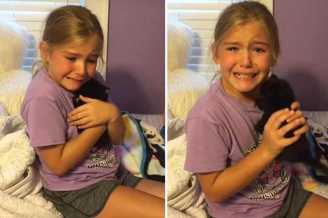 画像1: ペットとの別れは、つらいもの。 親友の黒猫を亡くした少女が、新たな親友を得て涙する様子がネットで感動を呼んでいます。 何も知らず帰宅すると子猫が! 少女は9歳のマーリー・フロストちゃん。 何も知らず友達の家から帰ってくると、自分の部屋に子猫が! 一瞬満面の笑みを見せます。 そしてすぐにうれし涙があふれて...。 「飼っていいの?」と聞くマーリーちゃん。 母親のニコールさんが「嬉しい?」と聞くと「うん、うん、ママありがとう!」と精一杯の喜びを表現しています。 実はマーリーちゃんには黒猫のサイモンという親友がいましたが、一昨年に亡くなってしまいました。 ニコールさんによるとマーリーちゃんは「動物が大好きで、ペットショップの寄付の缶にいつも自 [...] irorio.jp