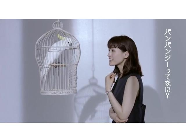 画像: WEB限定!綾瀬はるかとキバタンの掛け合いに注目