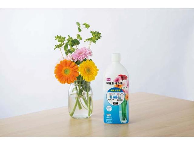 画像: 切り花を美しく長く咲かせる!水換え不要の延命剤