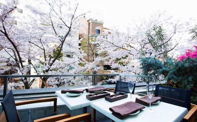 画像: 特等席は早い者勝ち!ミッドタウンのお花見は、桜に手が届きそうなレストランでランチ&ディナーが気分♡