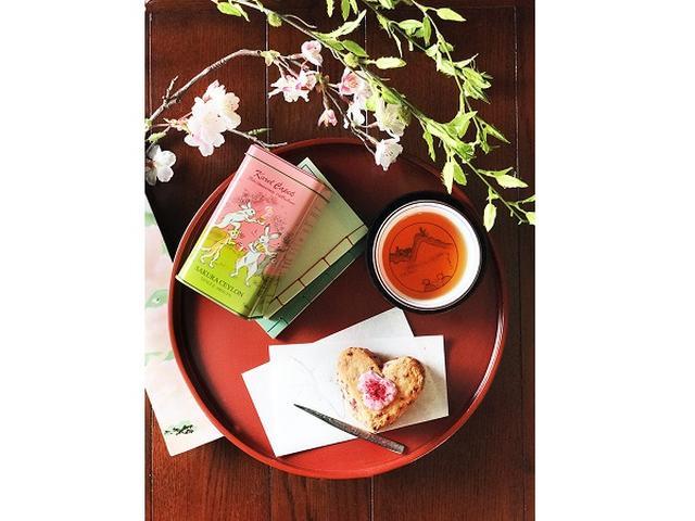 画像: 3月の桜ケーキ&春恋スコーンで華やかなティータイムを!