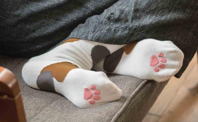 画像: ぷにぷに肉球が気持ちいい!春夏を快適にすごせる「猫足ソックス」がフェリシモ猫部から登場