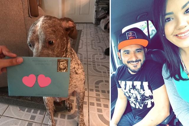 画像1: 4月18日、テキサス州に住むレベッカさんが愛犬の元に送られてきた1枚のカードをTwitter上で紹介した。 そのカードは愛犬アポロの誕生日を祝うもの。送り主は2年前から別居をしているレベッカさんの夫だ。 カードにはお祝いの言葉以上の思いが込められていた。 アポロとレベッカさんへの思いが綴られたカード 「君のことを考えて、微笑まなかったことはないよ。そのことには、永遠に感謝し続けるだろうね。愛しているよ、相棒。1日だって、君のことを考えなかった日はない。自分のことを、そしてママを大切にしてね。彼女のためにそばにいて欲しい。君が僕にしてくれたように」 レベッカさんはこのカードを、「2年前に別れた夫から、いまだにアポロに誕生日カードが来る [...] irorio.jp