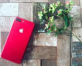 画像: 綺麗な赤が素敵すぎる!マギーやこじはるなどiPhone(PRODUCT)REDをゲットした芸能人たち♡