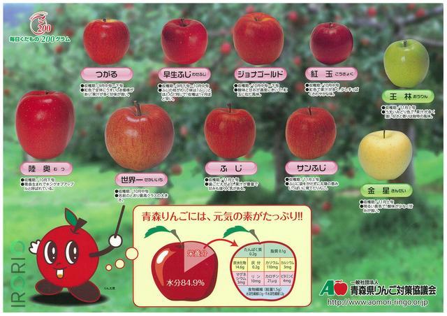 画像1: 半世紀近く、主に青森県内の小学生に配布される「りんごの下敷き」が、5月29日ごろからTwitter上で話題を呼んでいます。 青森県民は小学生になるとこういう下敷きを学校で配られるから、りんごの品種は見た目だけでなんとなくわかる pic.twitter.com/asFWSH4X3x — にとうへいえー(小2) (@Private_A) 2017年5月28日 りんご品種を写真付きで解説 下敷きは、りんごの各品種について写真付きで解説。もう一面でりんごの栽培法や料理をイラストで紹介しています。 発行元は、県内の生産者組合や卸売業者などでつくる一般社団法人青森県りんご対策協議会(青森市)です。 青森県だけかと思いきや、実は全国で配布していま [...] irorio.jp