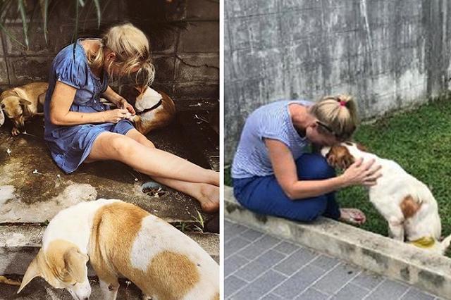 画像1: 日本ではほとんど目にすることがなくなった野良犬だが、世界には路上で生活している犬たちが多く存在する。たとえ保護されても、劣悪な環境で命を落とすこともある。 そんな野良犬たちの姿に心を痛めたのが、タイのソンクラー県で暮らすオーストラリア人のタマラ・ジョンストンさんだ。 オーストラリアで教師をしていたという彼女。 なぜ異国の地で、動物の保護活動を始めたのだろうか。 劣悪な公的なシェルター 公的なシェルターから犬たちを保護する活動も行っているタマラさん。 不衛生な環境により、多くの犬がダニやノミからうつる寄生虫に感染したり、避妊や去勢手術後の感染症により命を落としたりしているという。 ▼公的シェルターから犬を保護しているタマラさん 5月9 [...] irorio.jp