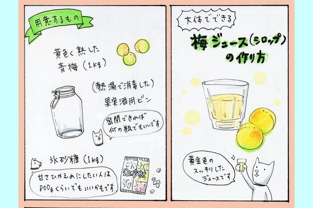 画像1: もうすぐ夏。 きんきんに冷えた甘酸っぱいジュースを家庭で作れたら、楽しいですよね! 和歌山県のなかやまハル子(@nkym_h)さんが6月13日、「梅シロップ」の作り方を解説したマンガをTwitterに投稿し話題になっています。 なかやまさんに描いた経緯を伺いました。 実家でいつも作っていた 去年、数人に梅ジュースの漬け方を聞かれたので、次シーズン来たら漫画にしてアップしますわ~ガハハ!って言ったのをこの間ハッと思い出したので急遽描きました!お納めください。 pic.twitter.com/kLnTCjmJnZ — なかやまハル子 (@nkym_h) 2017年6月13日 作品では、カラーイラストで手順を追ってウメを漬ける方法を解説。 [...] irorio.jp