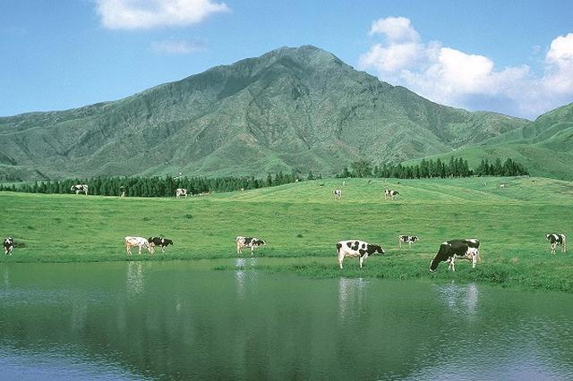 画像1: 熊本地震を乗り越えて、牛乳の生産を続ける「らくのうマザーズ」に牛乳への思いを取材した。 6月は「牛乳月間」 6月は牛乳月間だ。 国連食糧農業機関(FAO)が6月1日を「世界牛乳の日」と提唱したのを受け、日本でも2007年に6月1日を「牛乳の日」に、6月全体を「牛乳月間」と定めた。 最近は、6月の第3日曜日「父の日」に、「父」と「乳」をかけて「乳の日」イベントやキャンペーンを企画する酪農関連業者も増えてきている。 熊本県の「らくのうマザーズ」を取材 そんな牛乳の月に、震災を乗り越えて牛乳を作り続ける「らくのうマザーズ」(熊本県酪農業協同組合連合会)を取材した。 同会は、熊本県で乳牛の飼養・管理技術の指導から乳製品の製造販売までを一貫し [...] irorio.jp