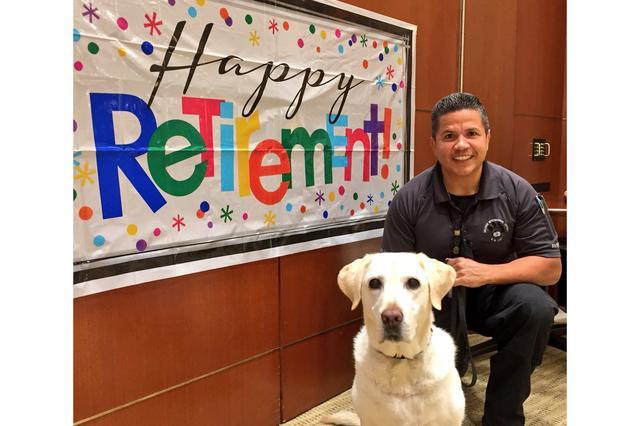 画像1: 空港の安全を守ってきた1匹のワンコが、とっても幸せな引退の日を迎えた。 米フロリダ州にあるオーランド国際空港で、5年間に渡り警察犬(通称:K-9)として活躍してきたGemaちゃんだ。 ▼相棒のエディさんと一緒に There she is! K-9 Gema is ready to party. She's retiring after almost 5 years at MCO with handler Eddie. #HappyRetirementGema pic.twitter.com/4PUsHP4rmX — Orlando Intl Airport (@MCO) 2017年6月8日 オーランド国際空港の公式Twi [...] irorio.jp