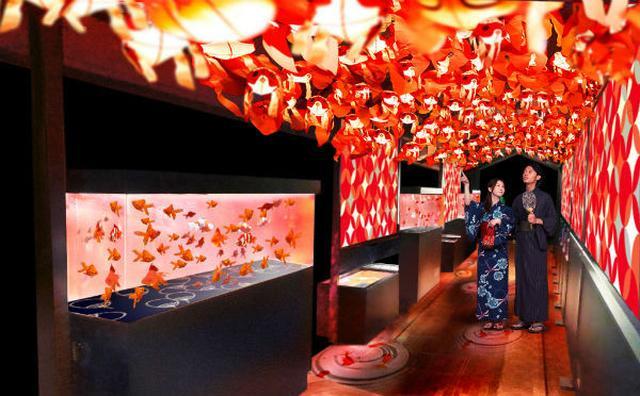 画像: 江戸のお祭り気分が味わえちゃう♪すみだ水族館「金魚づくし」の夏イベントが華やか♡