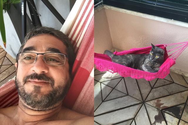 画像: パパと一緒に専用ハンモックでゆったりする猫に9万いいね!