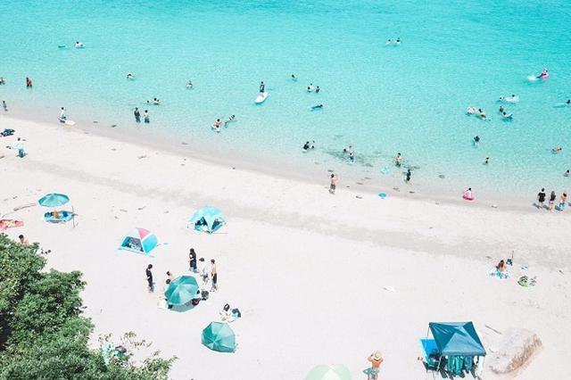 画像: 【取材】海のアクアブルーにうっとり...高知県柏島の「絶景写真」が話題に!
