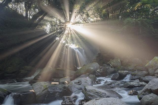 画像: 熊本の夫婦滝の写真が神々しいと話題!撮影者「1年間通い詰めた」