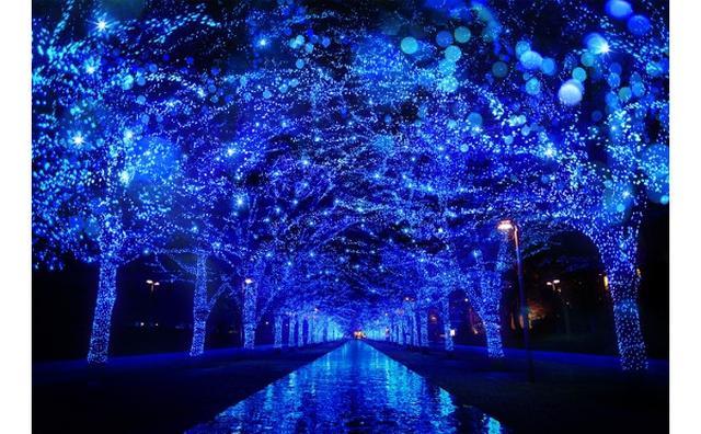 画像: 今年も開催決定!渋谷がブルーに染まる「青の洞窟」が11月22日からスタート