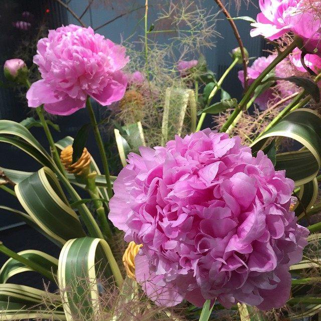 画像: ピオニーみたいなかわいいお花がやってきた☺︎✨ 今日から7月 残りの2015年もがんばろう^ ^ #芍薬 #芍薬の花 #シャクヤク #ピンク #pink #ピオニー instagram.com