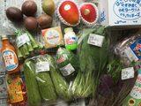 画像: 沖縄島野菜\(^o^)/ナーベラーンブシーー