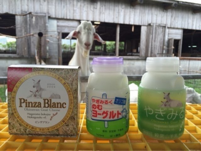 画像: 沖縄のやぎ牧場〜琉球放送と九州で放送されます!