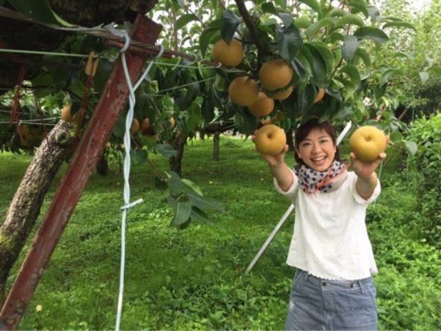 画像: 明日朝8時「大地にカンパイ!」BSフジで福島の梨!