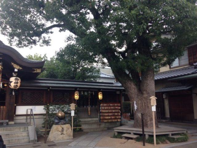 画像: 2015初秋の京都日帰り旅(3)糸仙