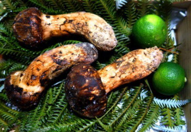 画像: 松茸と栗のリゾット
