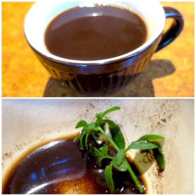 画像: カレーですよ2181(赤坂見附 サファリ)エチオピアカレーはお茶の水ではなくアフリカ。
