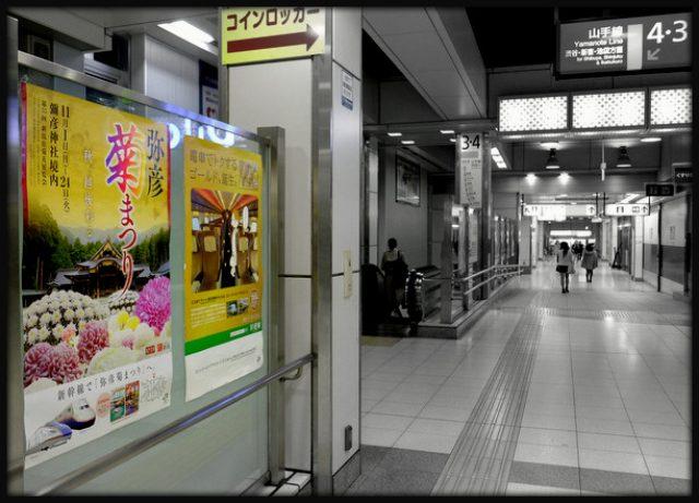 画像: 「新潟・弥彦 弥彦温泉 割烹の宿 櫻家」