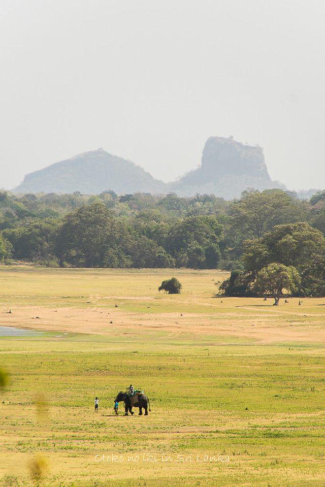 画像: ヘリタンス・カンダラマ (スリランカ)バワの世界観を体感せよ