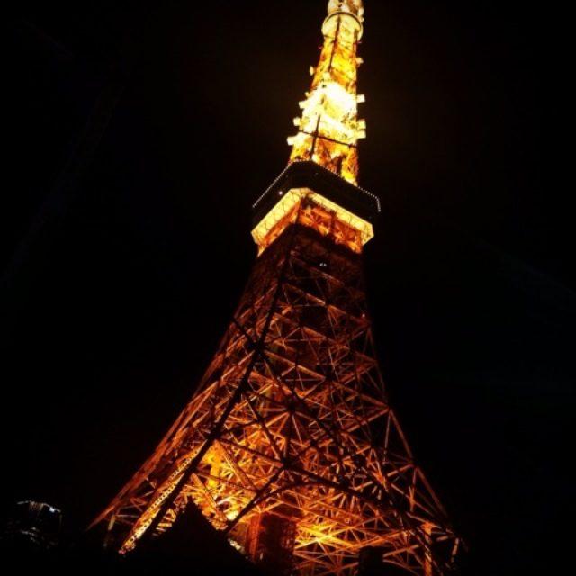 画像: タワシタ