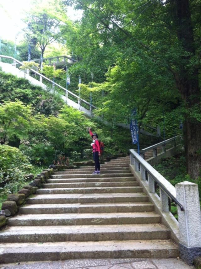 画像: 鎌倉ハイキングのつづきです