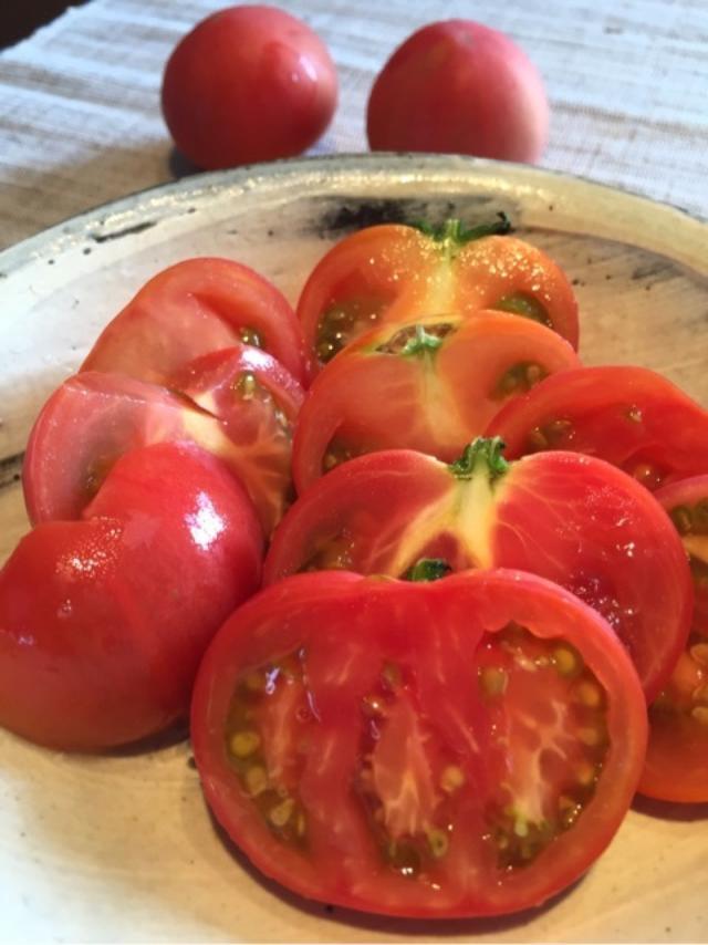 画像: 熊本で食べたもの。水前寺もやし!赤なす!トマト!