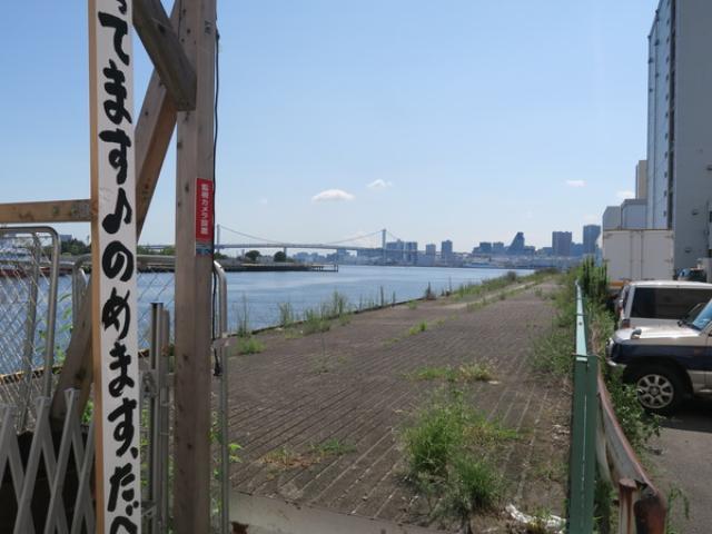 画像: マグロ卸のマグロ丼の店(勝どき/海鮮丼)