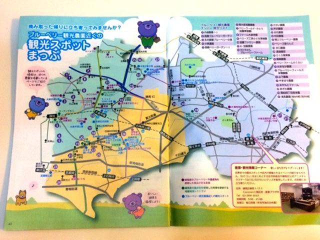 画像: 東京練馬でブルーベリーの手摘み体験!やまはちブルーベリー農園へ