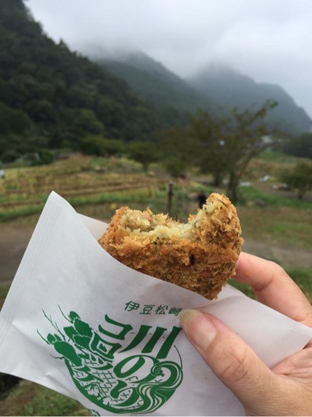 画像: 日本で最も美しい村・松崎町へ稲刈りツアーに行ってきました!